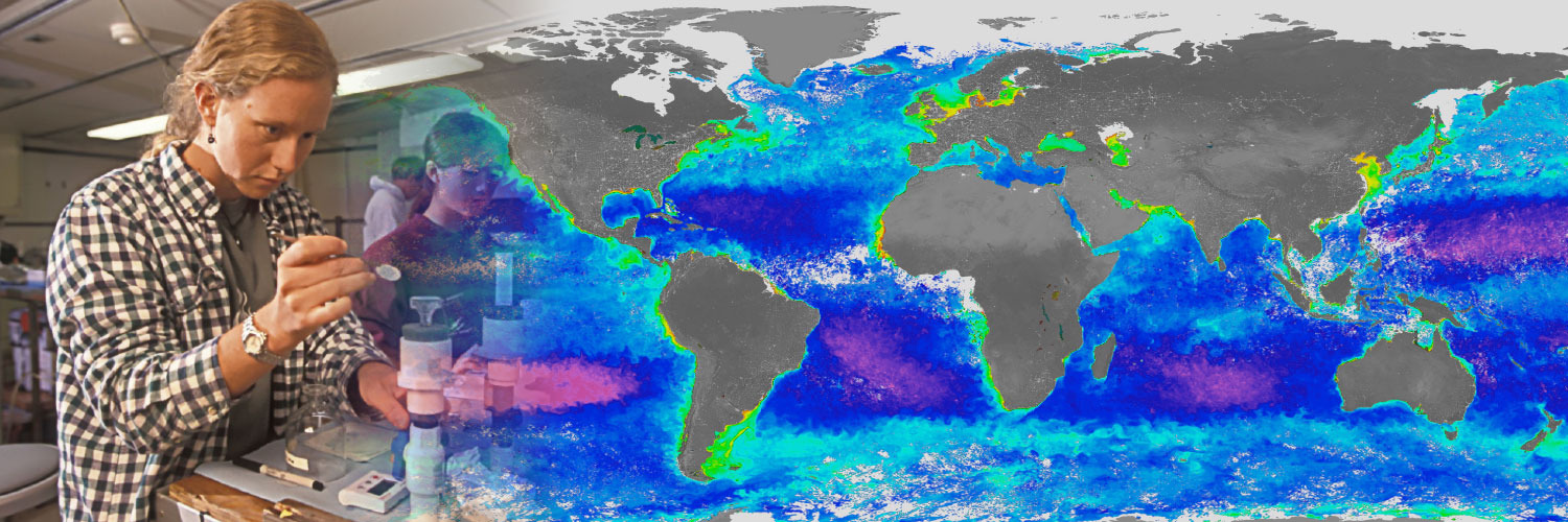 Chemical Oceanography - All you need to about a career in Oceanography - Dive into the unknown